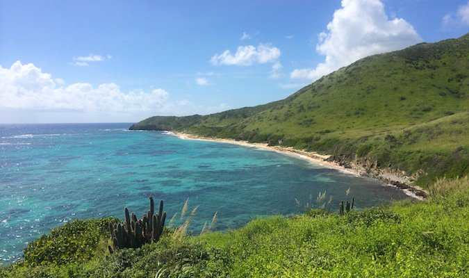 the beach at jack bay, st. croix usvi
