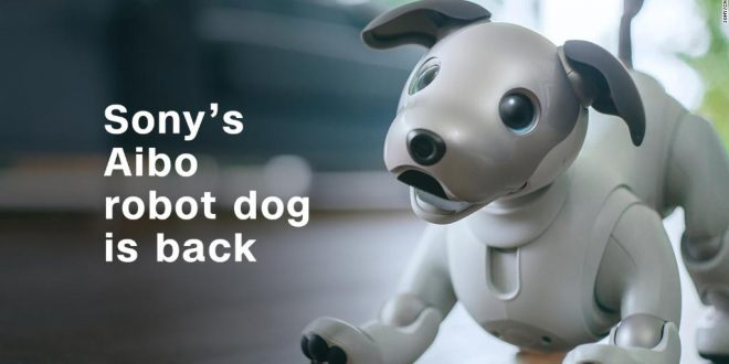 Sony's cute - and super smart - robot dog is coming to the