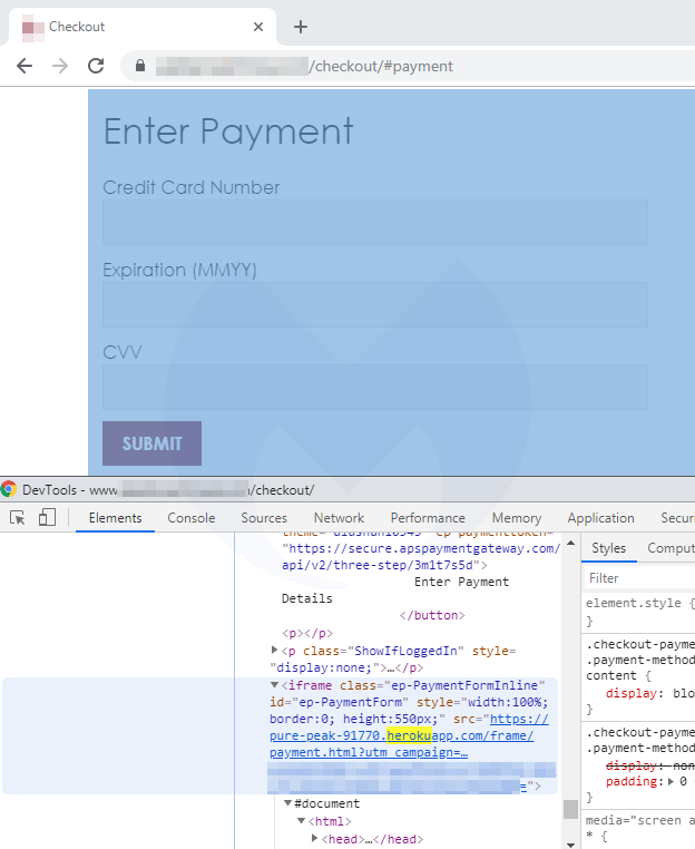 The fake payment form.